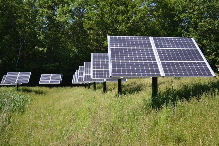 community_solar_sundrenched news